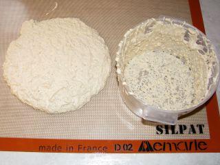 Quinoa_Flour_No_Knead_bowl